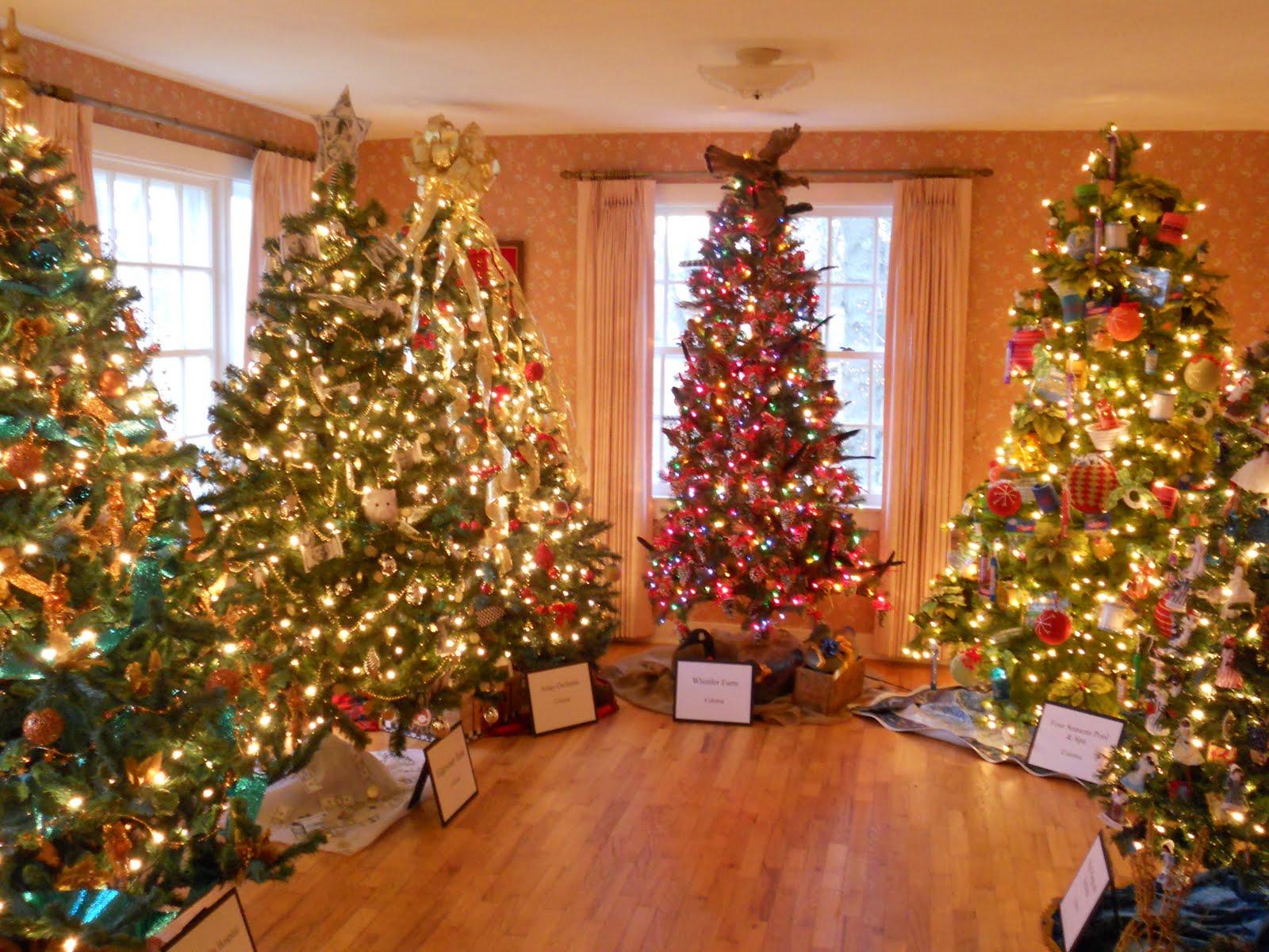 Első adventi hétvége – Hol a karácsonyfa? - Rendberaklak